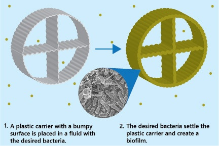 Containerized modular MBBR plants allow bacteria to form colonies called biofilms on plastic carriers.